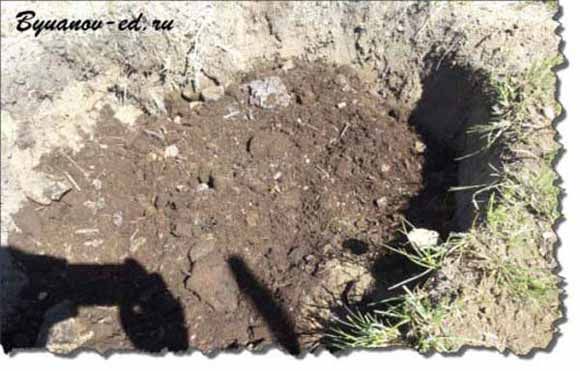 Готовим яму под посадку