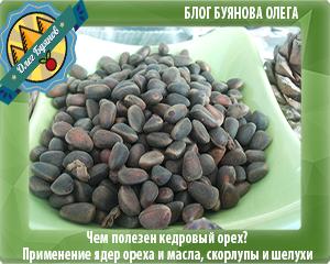 Кедровые орехи польза и вред беременным