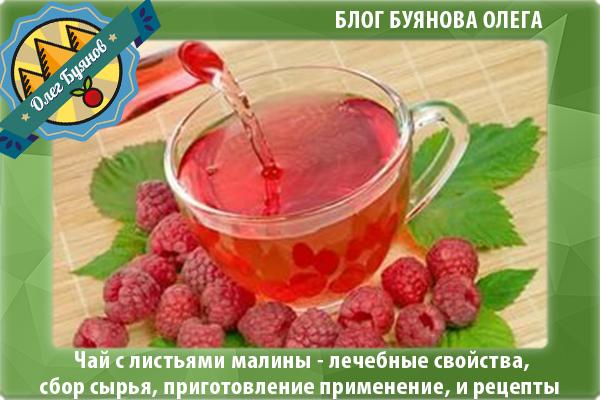 Кефир или зеленый чай