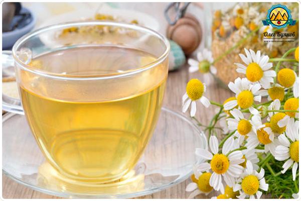 Ромашковый чай - польза и вред для здоровья женщин ...