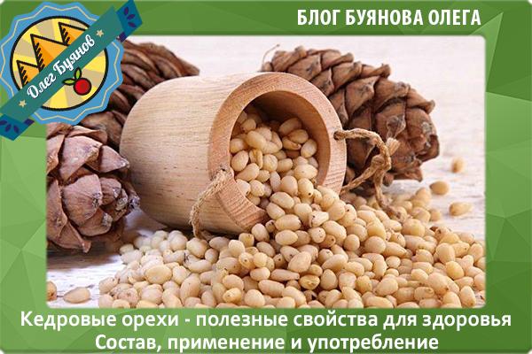 Кедровые орешки польза и вред настойки