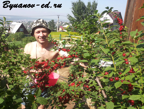 Буянов Олег