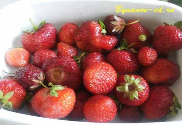 ягодка клбуника