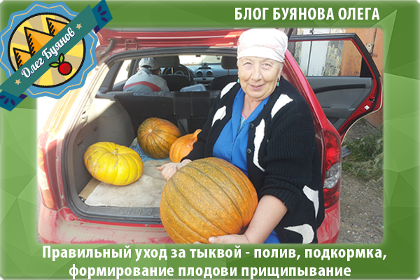 мама с большим плодом