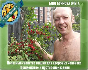 дачная ягода