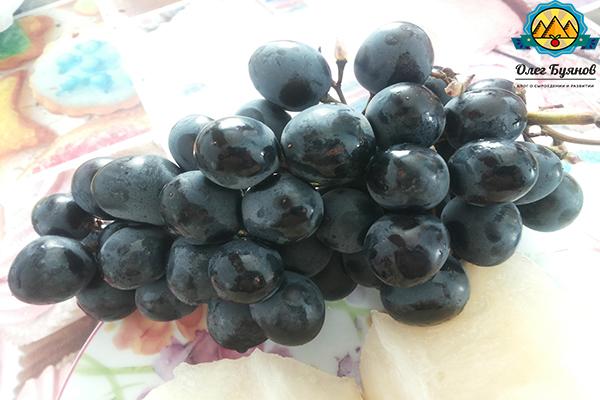 чёрные вкусные плоды