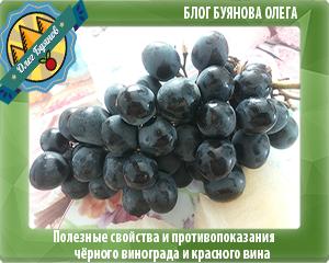 гроздь винограда чёрного