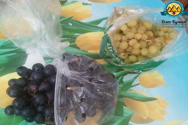 чёрный и зелёный виноград