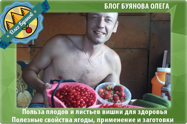 я с урожаем ягодки