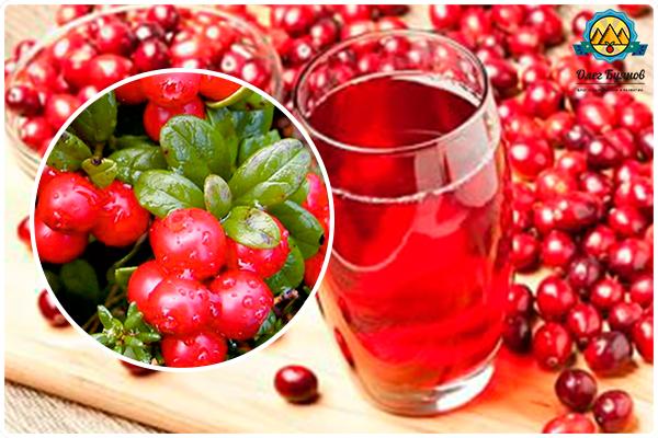 сок целебной ягодки