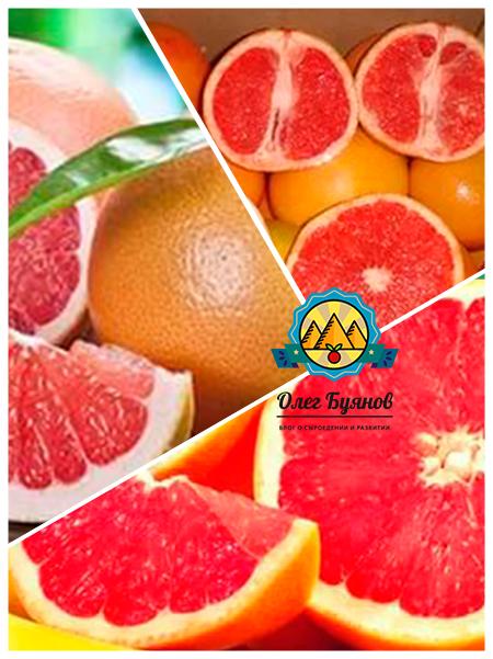 ценный плод грейпфрут