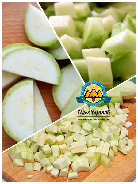 плод цукини в разрезе