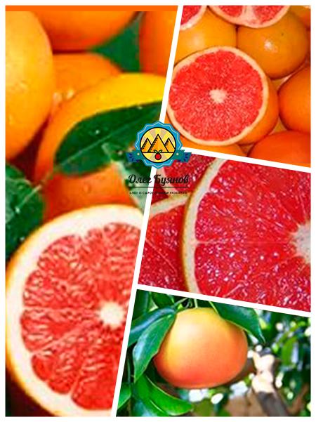 плоды и мякоть фрукта