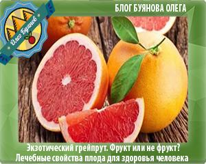 плод экзотического фрукта