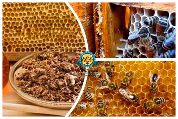 пчёлы. мёд и улей