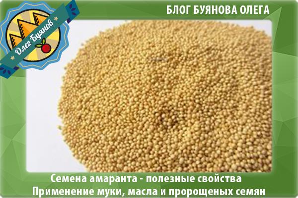 целительные семена амаранта