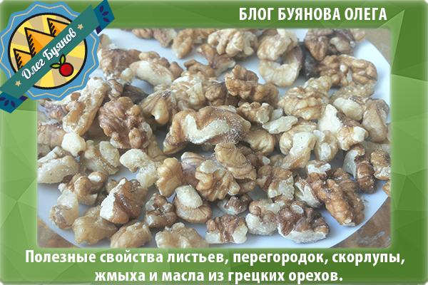 ядра грецкого ореха