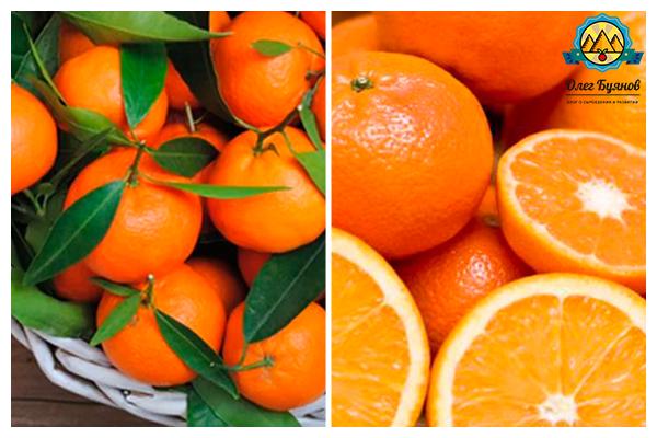 цельный фрукт и дольки