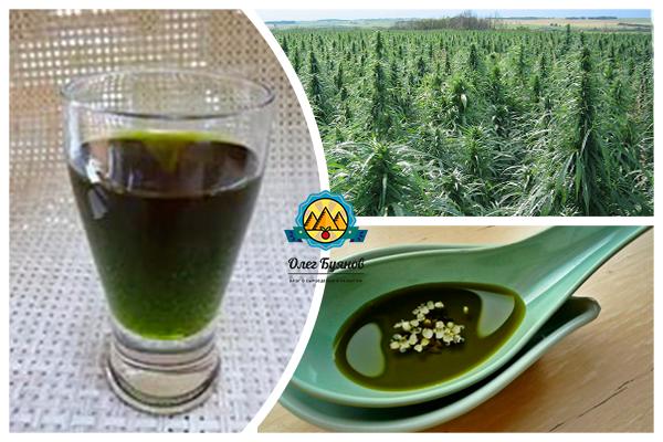 зелёное масло конопли
