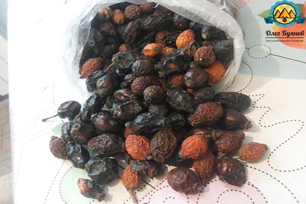 ягоды сушеного шиповника