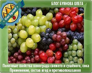 красивые ягоды винограда