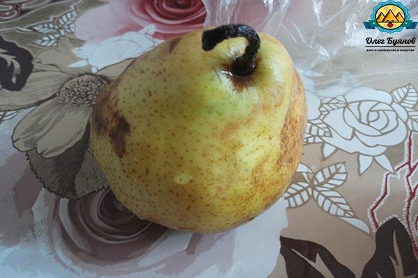 жёлтый фрукт груша