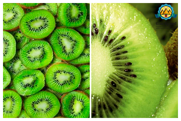 долька плода