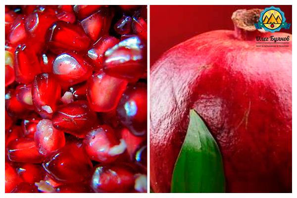 красный фрукт с косточками