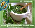 суп с зеленью