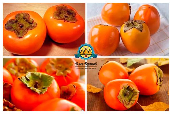 вкусный оранжевый плод