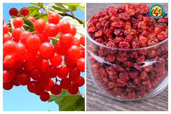 сушёные плоды