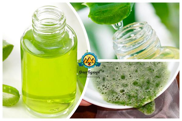зелёный сок растения