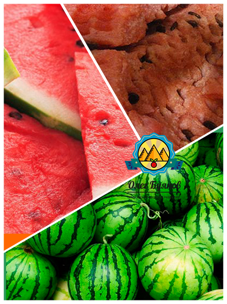 зелёный плод арбуза