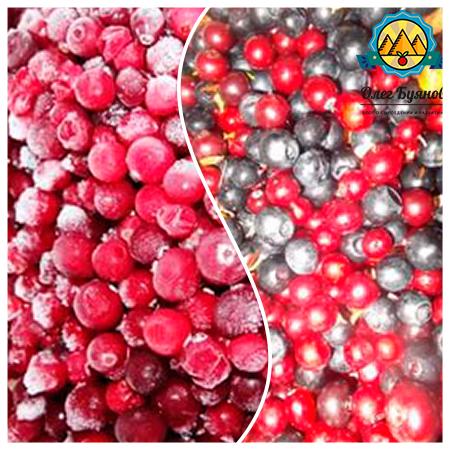 свежая и замороженная ягода