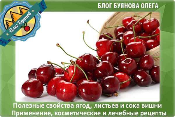 вишнёвая ягодка