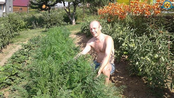 буянов олег и морковь