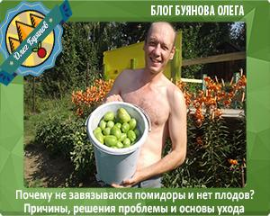 олег буянов и помидоры