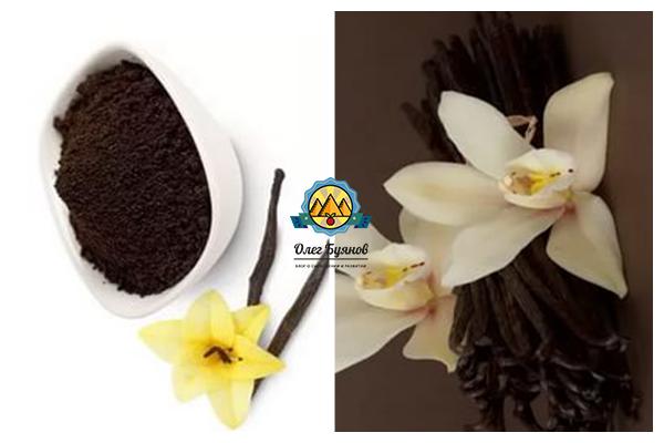 цветки и цветки ванили