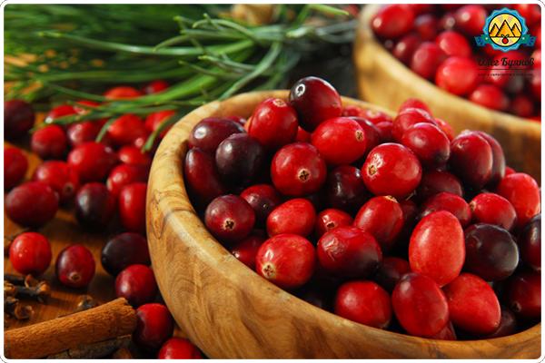 много плодов клюквы