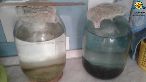 настоящая шунгитовая вода