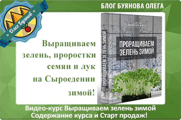 видео-курс выращиваем зелень зимой