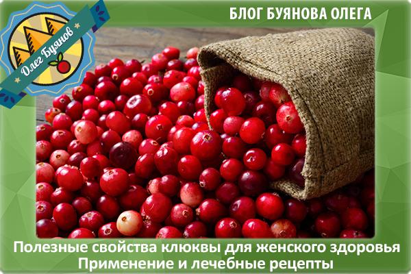 польза ягод клюквы