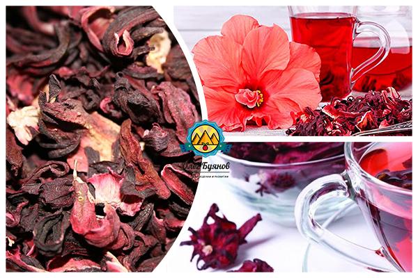суданская роза чай