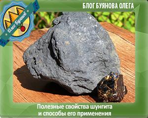 шунгит полезный камень