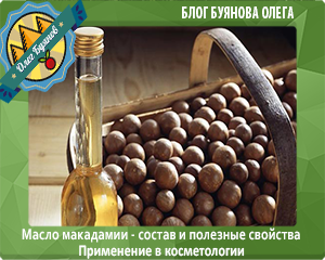 орехи и масло макадамии