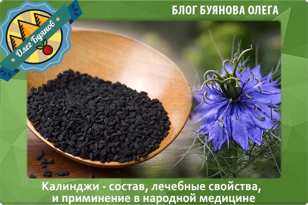 цветок и семена калинджи