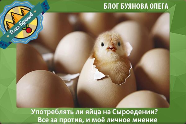 яйца на сыроедении
