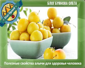 плоды как у сливы