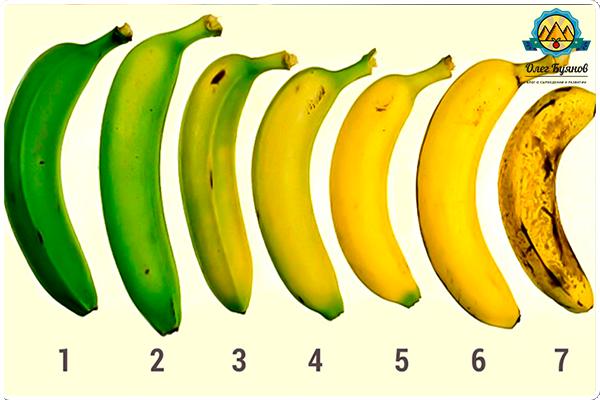 созревание бананов