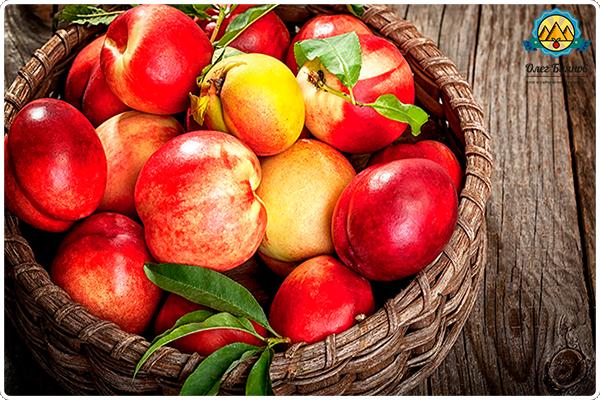 ведро с плодами